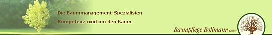 baumpflege_bollmann1